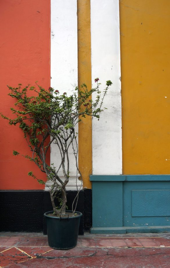Lima's Colorful Side