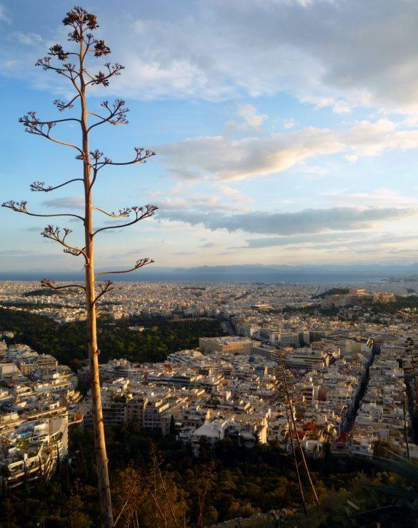 Climbing Our Way Through Athens