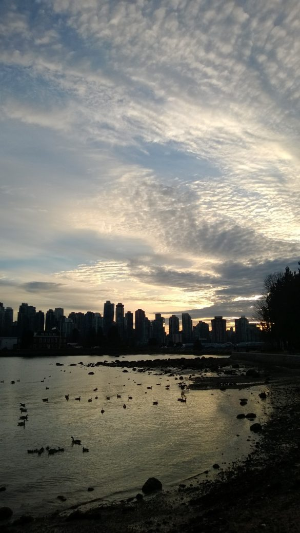 Vancouver Skylines