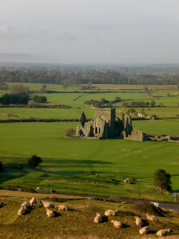Views from the Rock of Cashel