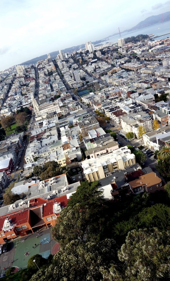 Views and Murals of Coit Tower