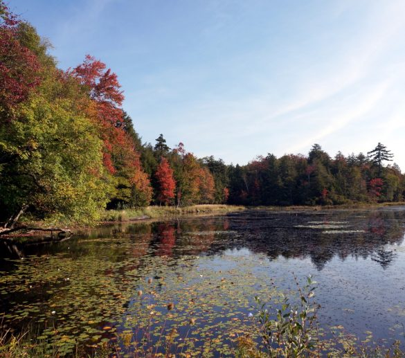 An Autumn Camp on Cranberry Lake