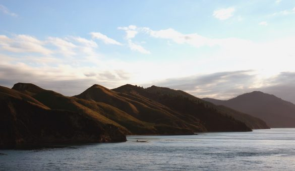 Ferry Ride through the Cook Strait
