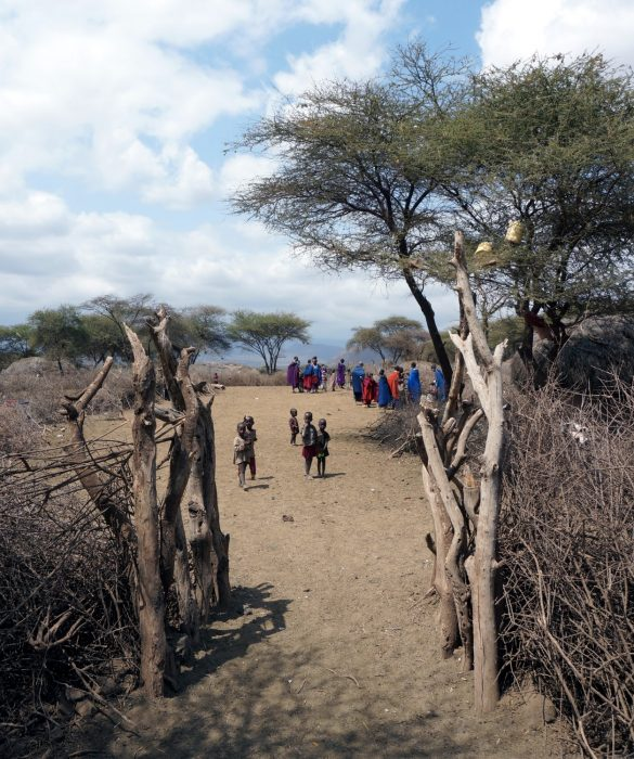 Pens and Walls of the Maasai Boma