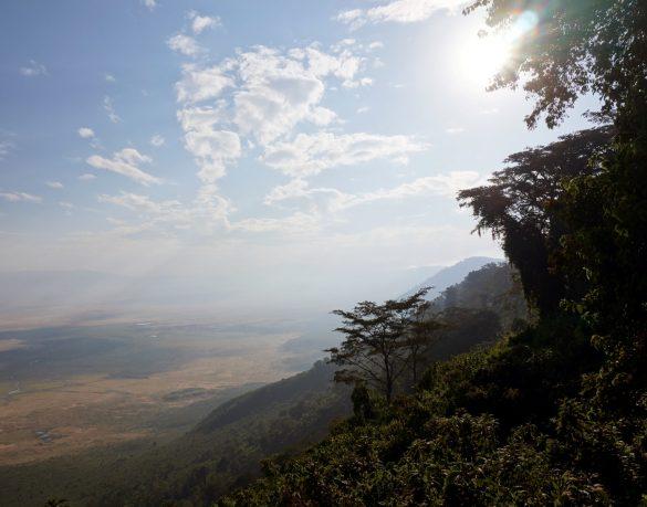 Descent into the Volcanic Caldera