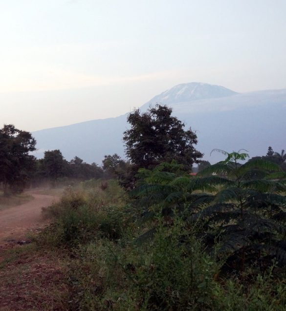 Views of the Mountain from Moshi