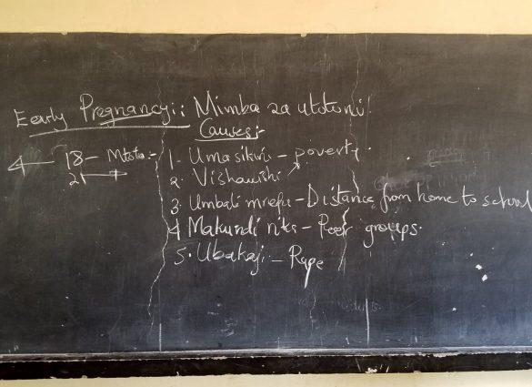 Sex Ed in Swahili
