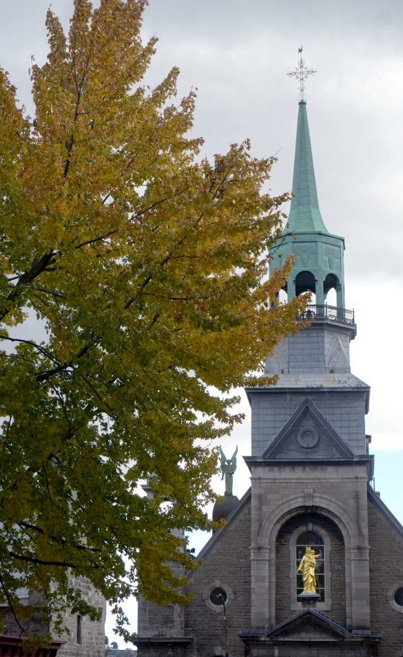 Autumn Trees and Architecture